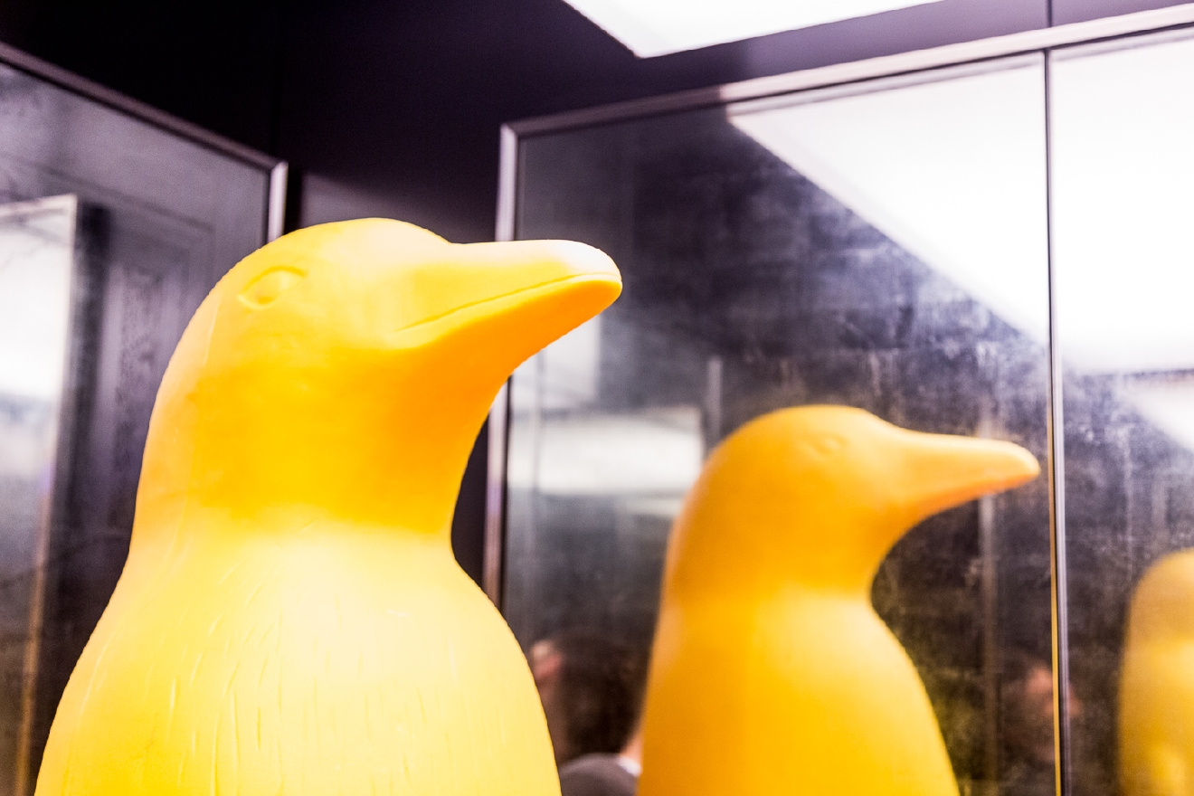 Awesome museum? Sure. Phenomenal restaurant? Yeah yeah. Stunning boutique hotel? Whatever. We know what the real draw is... It's the penguins. / 21c Museum Hotel Cincinnati is located at 609 Walnut Street (45202). // Image: Daniel Smyth Photography