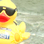 Rubber ducks made a splash in the 9th annual Duck Race