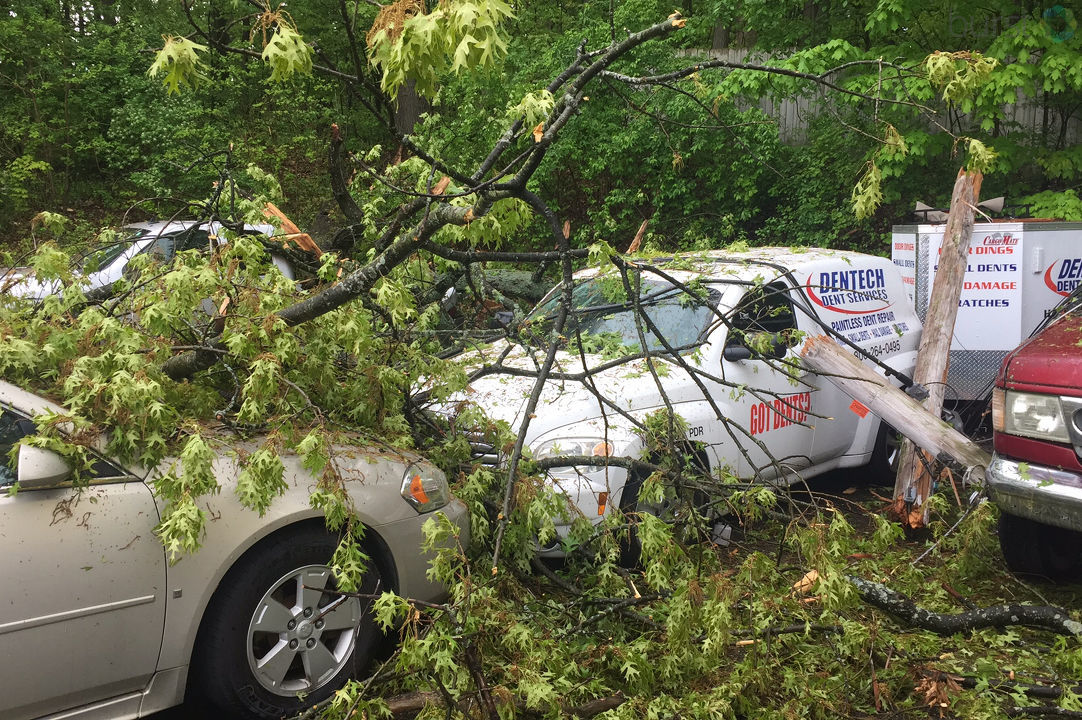 Three vehicles were damaged Monday, May 21, 2018, when a tree fell onto the lot at Stadium Motors on Stadium Drive in Kalamazoo, Michigan.{ } (WWMT/Matt Loughrin)