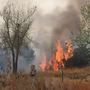 State of emergency declared for 52 Oklahoma counties due to ongoing fires