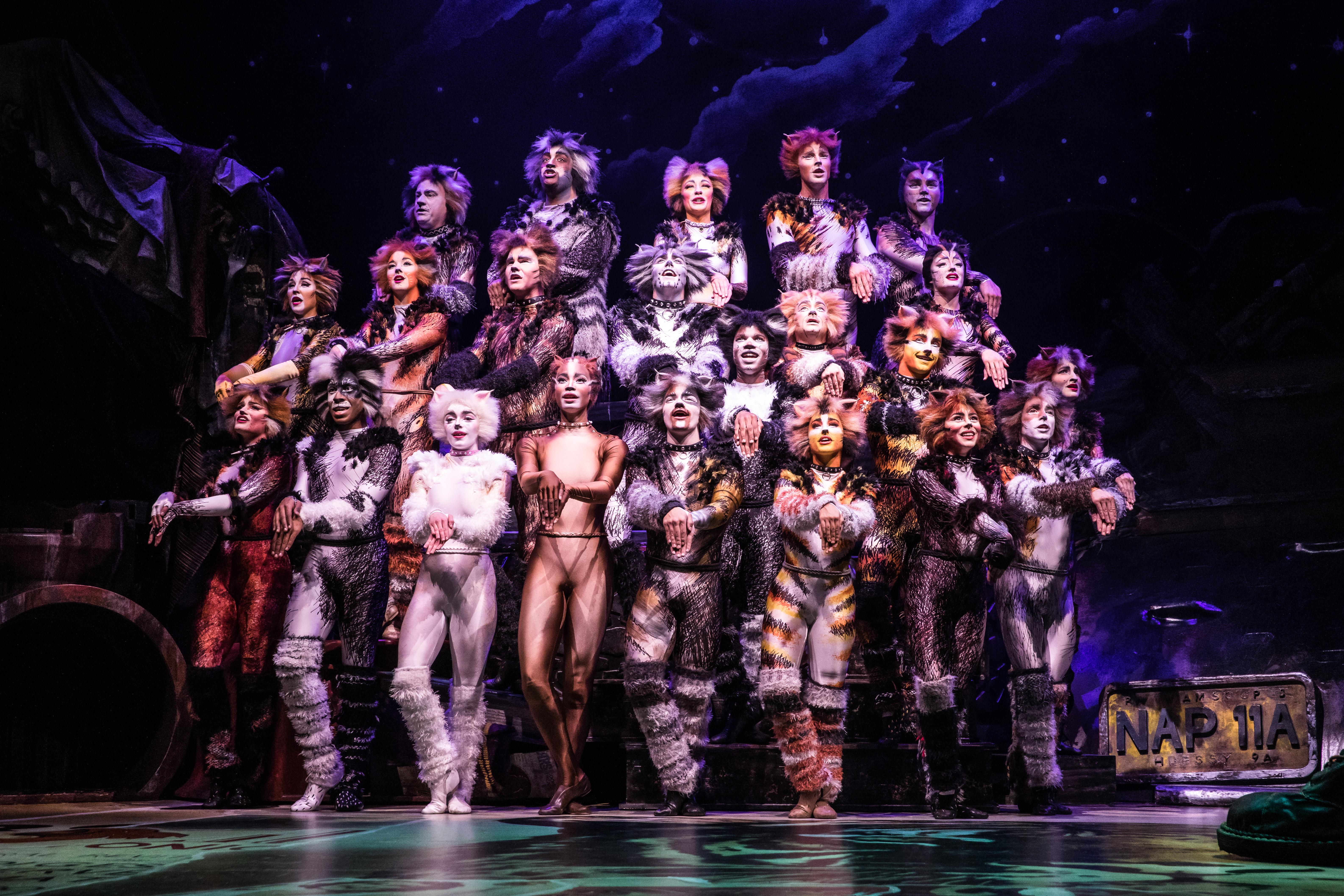 For eight performances only, the first ever Broadway revival of CATS is coming to the Paramount! The original Broadway production opened in 1982 at Broadway's Winter Garden Theater, where it ran for 7,485 performances and 18 years. Since its world premiere, CATS has been presented in more than 30 countries, has been translated into 15 languages, and has been seen by more than 73 million people worldwide. Starting from{&amp;nbsp;}Tuesday, March 26 to Sunday, March 31, CATS is gracing Seattle with their presence and<a  href=&quot;https://seattle.broadway.com/shows/cats-baa/&quot; target=&quot;_blank&quot; title=&quot;https://seattle.broadway.com/shows/cats-baa/&quot;>{&amp;nbsp;}you can grab your tickets, starting at $40</a>. (Image courtesy of Broadway at the Paramount).