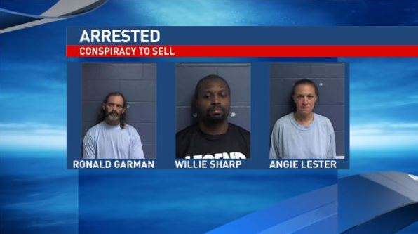 Ten arrested in Monona County drug investigation