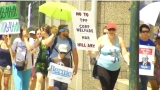 Sanders supporters rally in Asheville for 'March for Bernie'