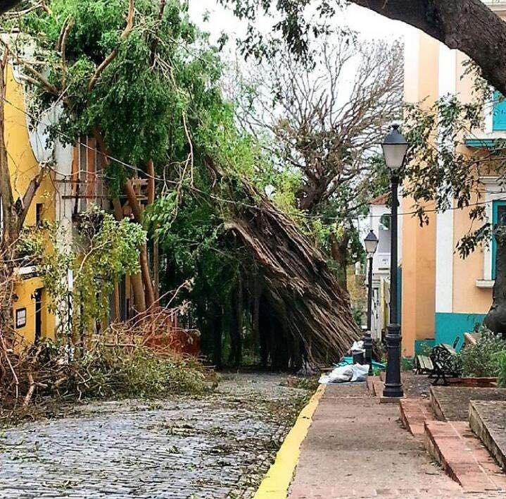 Damage in Puerto Rico{&amp;nbsp;}(Submitted to Fox 17 News)<p></p>