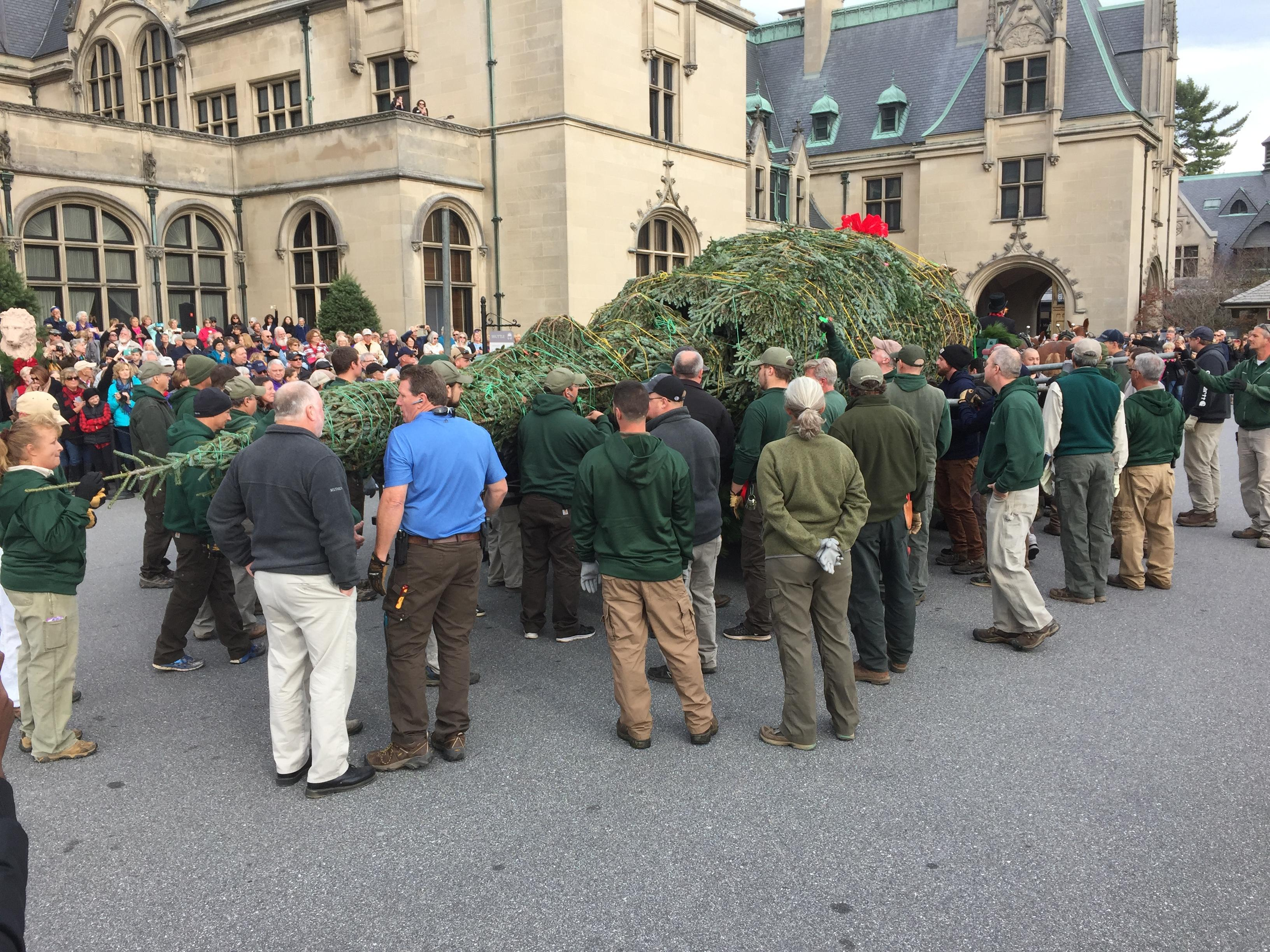 The annual Biltmore House Christmas tree raising event is being held Wednesday morning. (Photo credit: WLOS Staff)