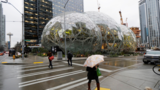 Local metal-working company had hand in building Amazon's lavish building in Seattle