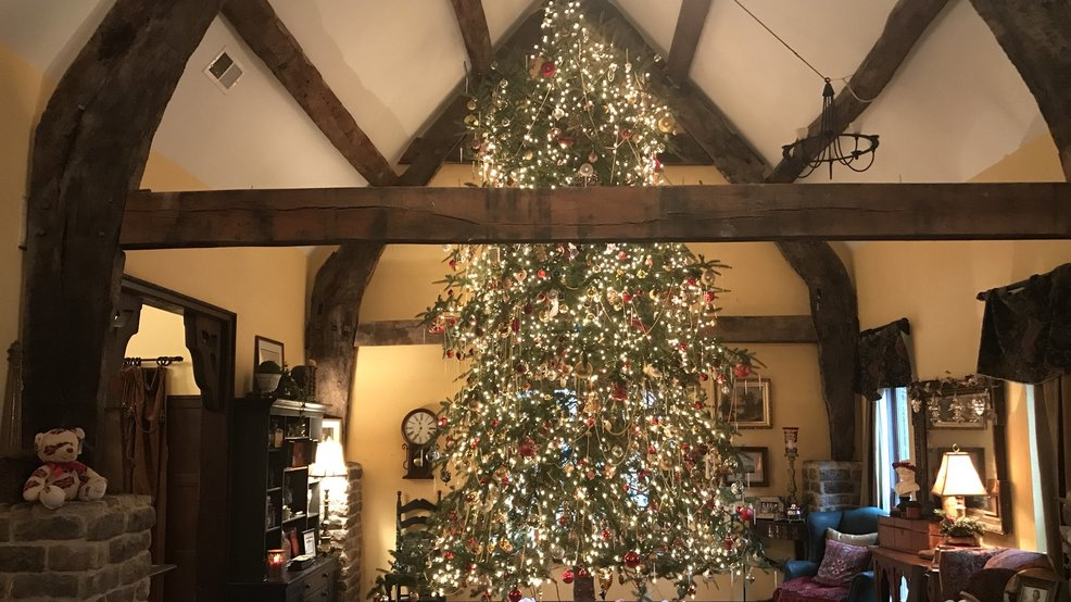 evington family decorates 23 foot tall christmas tree with 5000 lights 1000 ornaments