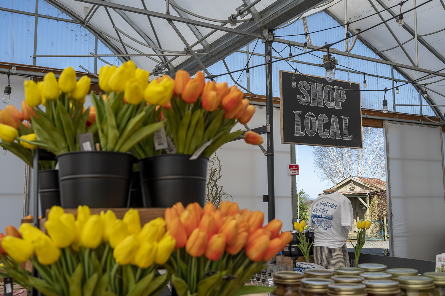 Visitors can visit the market to purchase tulip bulbs to take home. Create a slice of Skagit Valley in your yard and refer to Tulip Town's website for handy planting guides and best practices for blooms. (Rachael Jones / Seattle Refined)