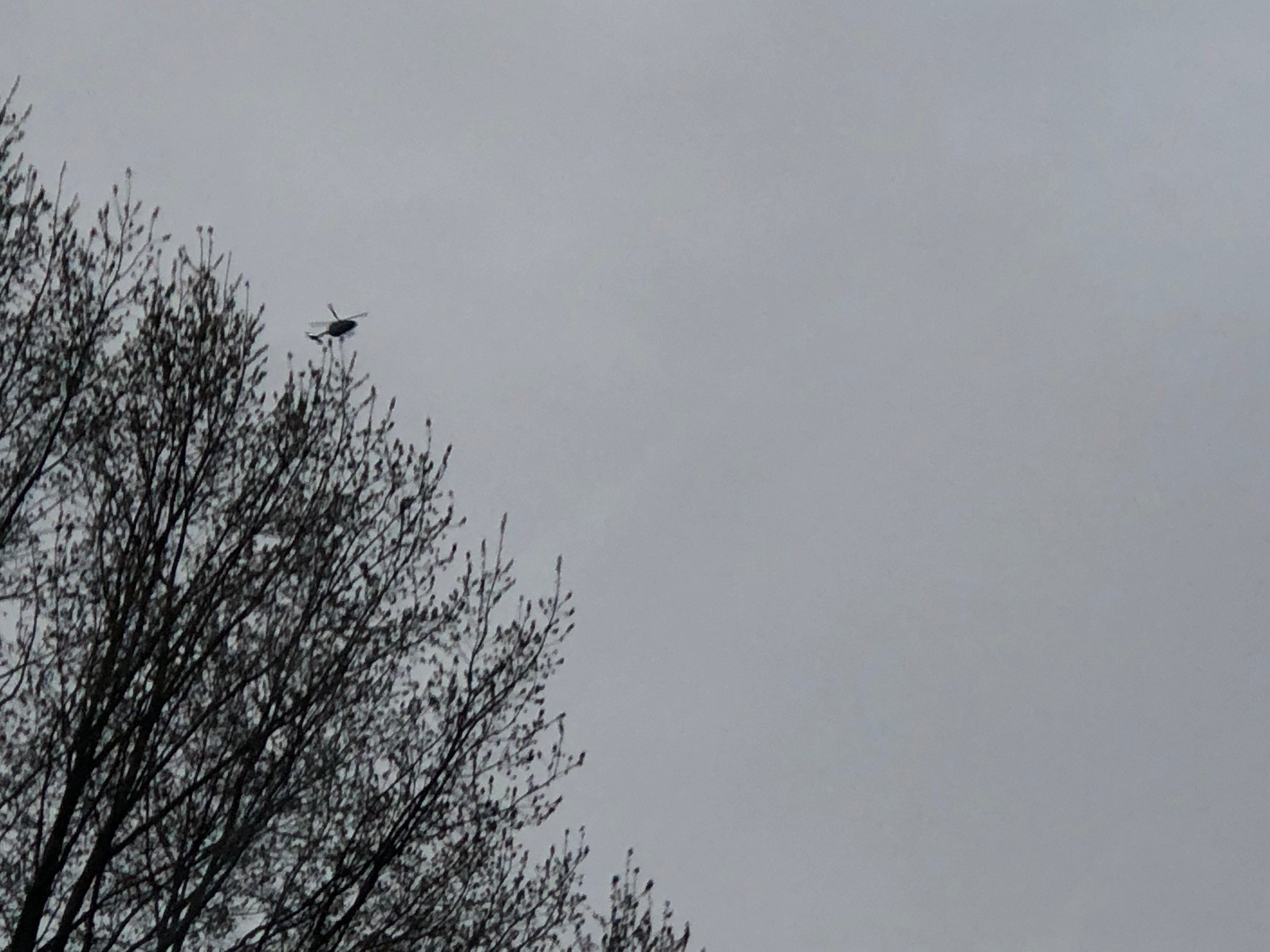 A helicopter flies over the Huntington area Tuesday, where a series of raids are being conducted. (WCHS/WVAH)