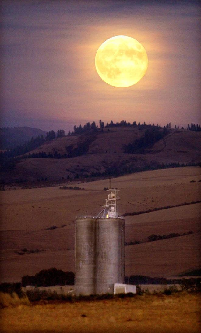 A near-full moon glows glows above a grain elevator at the foothills of the Blue Mountains in Walla Walla, Wash. on Sunday, Sept. 30, 2012. (AP Photo/Walla Walla Union-Bulletin, Jeff Horner)