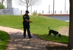 New Green Bay Police Department K-9 program partners with area shelter to help get dogs adopted, May 16,  2017. (WLUK/Dave Duchan)