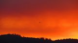 Minerva Fire in Plumas County mountains reaches 2,150 acres; 43 percent containment