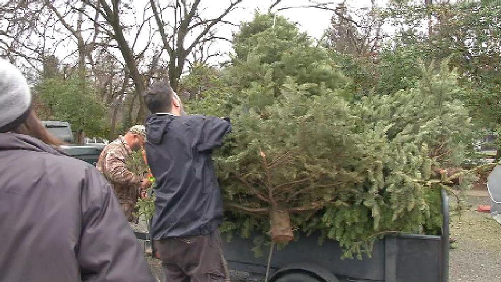 boy scout troop two breaks christmas tree pick up record - Boy Scout Christmas Trees