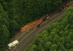 Log truck crash on Hwy 47 - 1.jpg