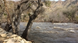 Photos: Kern River swollen from recent rainfall