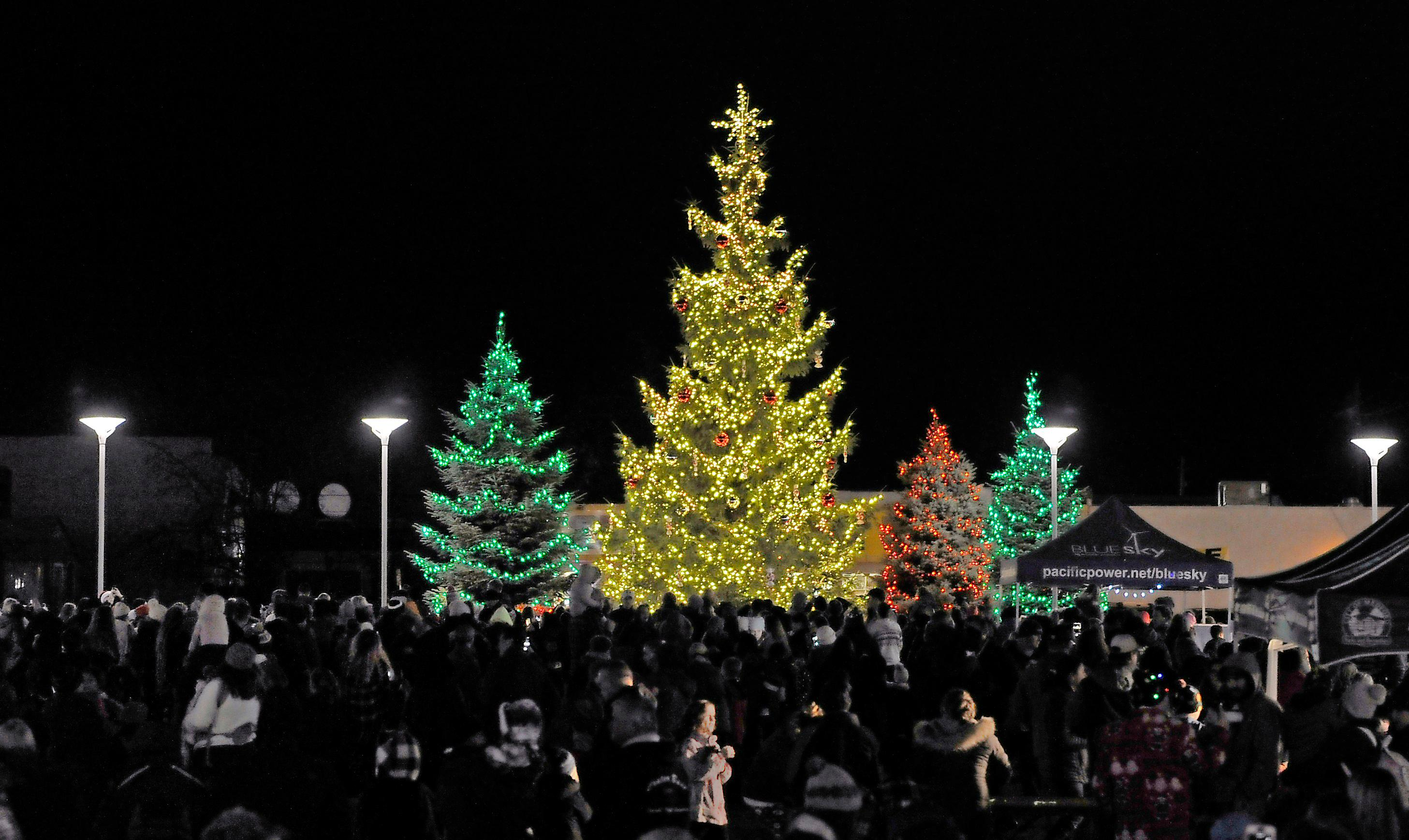 Andy Atkinson / Mail TribuneMedford Christmas trees to illuminated in Pear Blossom Park Saturday night.