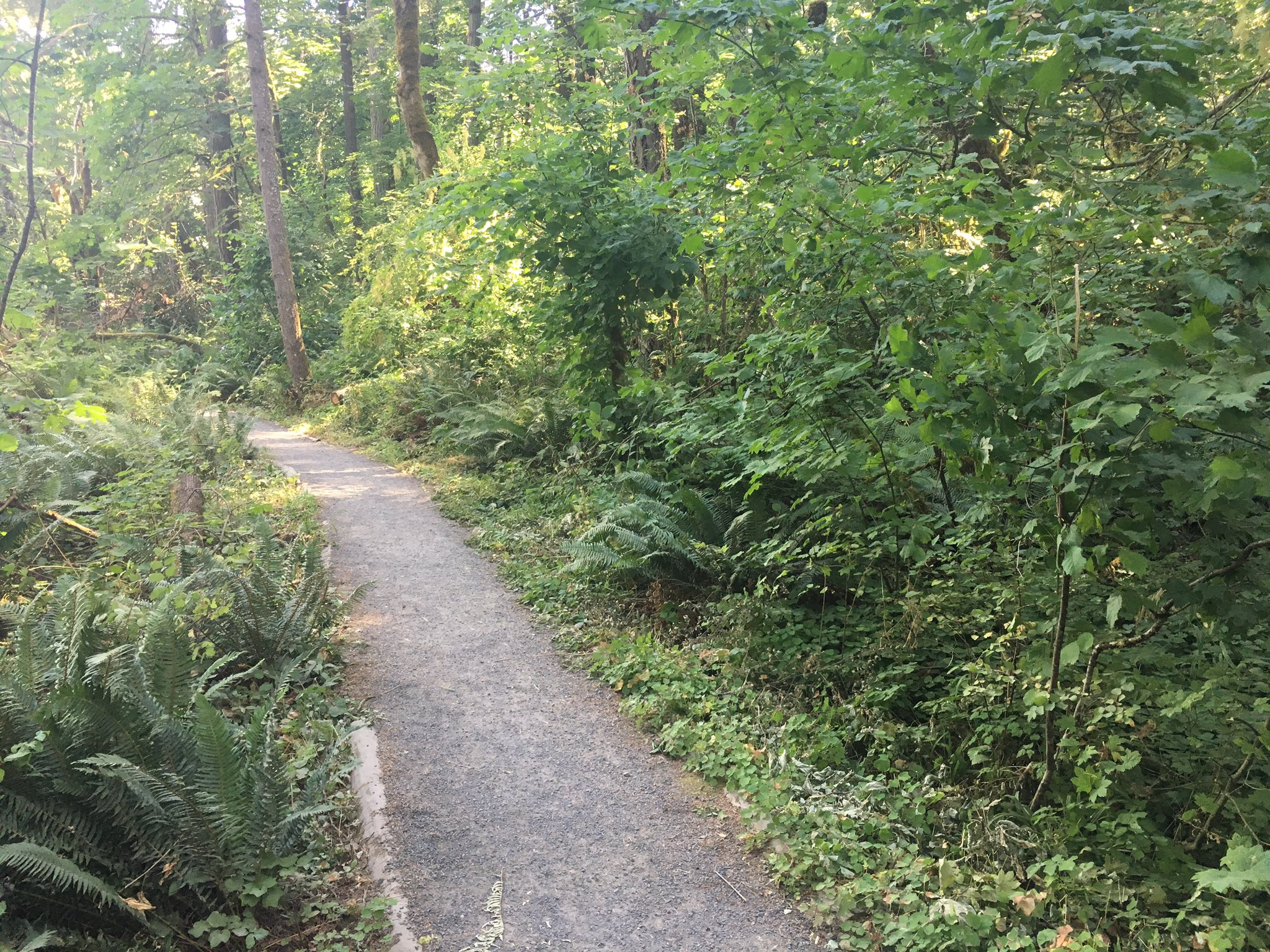 Police man exposed himself to woman on ridgeline trail in eugene kmtr the man exposed himself to the woman around 843 pm july 18 on the publicscrutiny Images