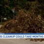 Hurricane debris may linger on your lawn for months
