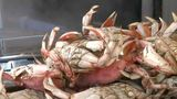 28 accidents reported off Oregon and Washington coasts since crab season began