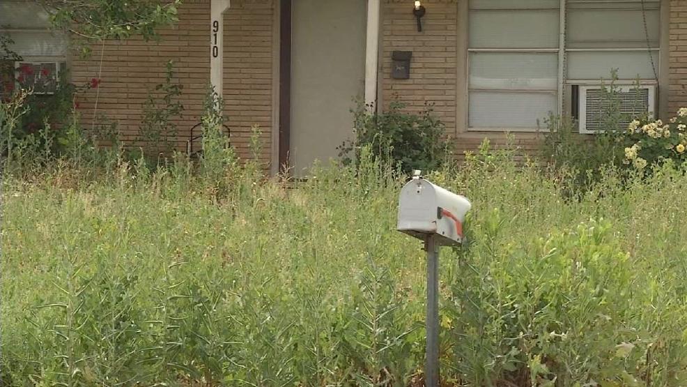 - City Of Abilene Warns Residents: Keep Your Grass Cut KTXS