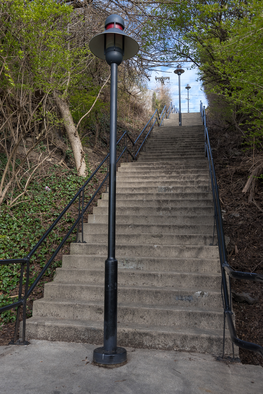 The final stretch of steps leading into Mt. Adams is shrouded on either side by a dense canopy of leaves. Light posts split the path into two unofficial lanes for climbers and descenders. / Image: Phil Armstrong, Cincinnati Refined // Published: 4.13.18