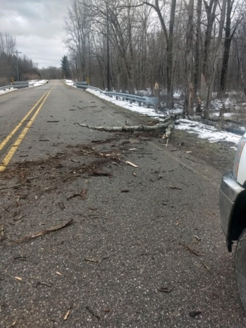 Downfall blocks roadways in Van Buren County. (WWMT/Contributed)