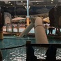 Water park duct collapse injures 5 in Ohio