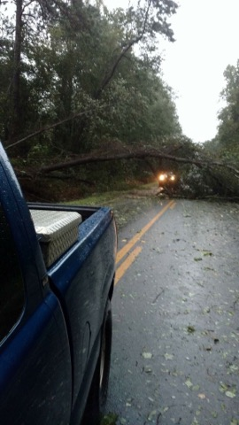 Trees down in eastern cities and towns as well as numerous power outages have been reported. / Tara Harden, Willacoochee.