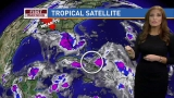 Invest 99 formation chance drops to 50 percent over 5 days