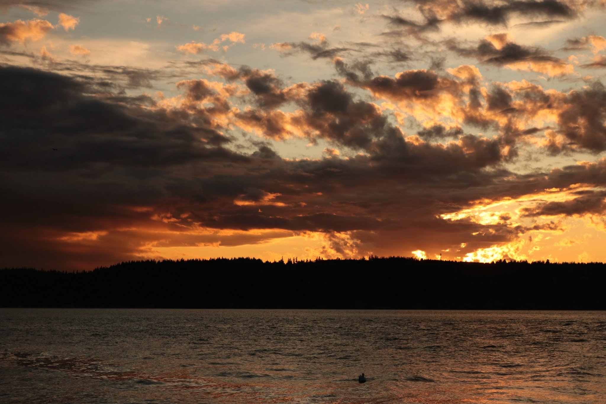 Sunset in Mukilteo, Wash. (Photo: Fred Huston/Twitter)