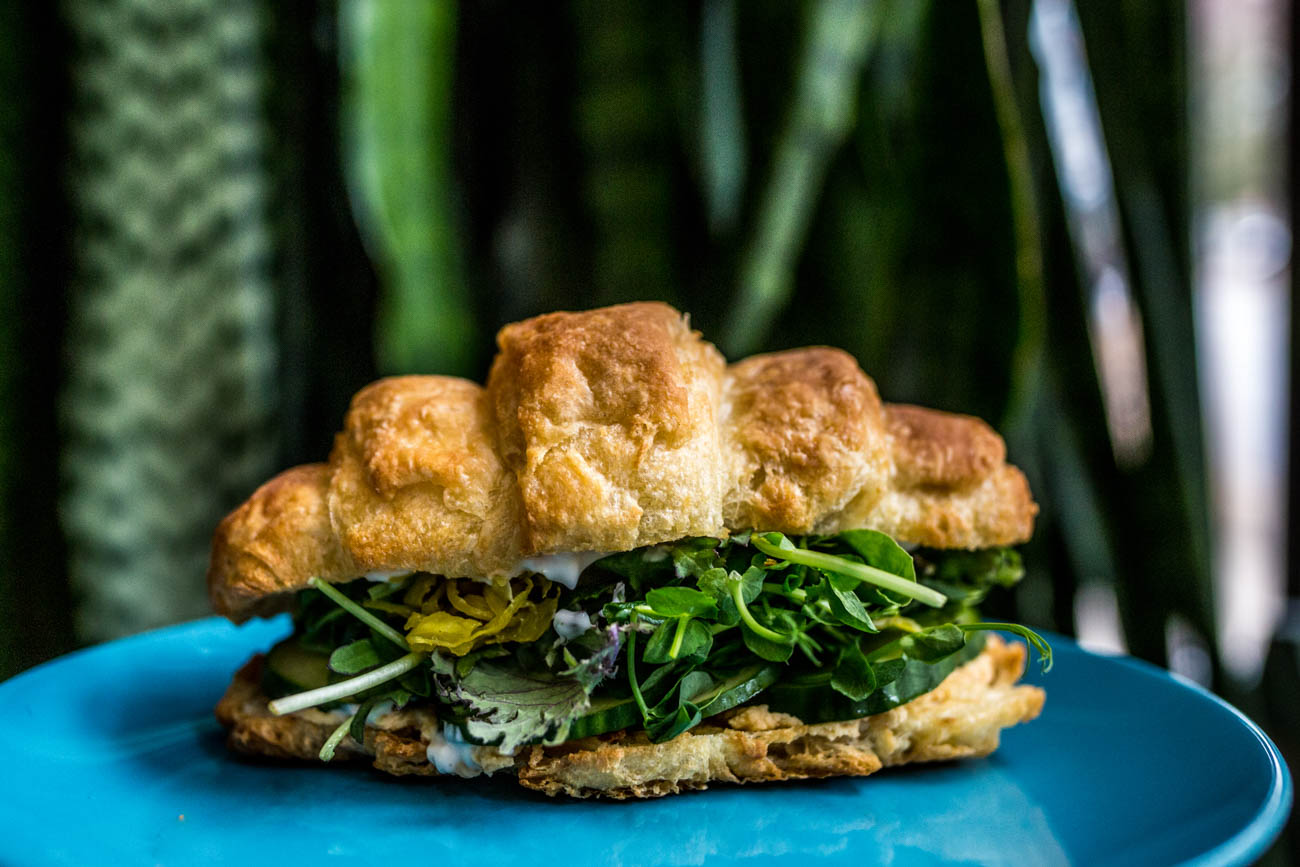 The Greens sandwich from Happy Chicks Bakery: house-made croissant with hummus, kale, sliced cucumbers, Waterfields microgreens, Fab Ferments fermented veggies, and mayo / Image: Catherine Viox // Published: 1.4.20