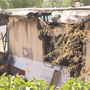 Three dogs perish in mobile home fire