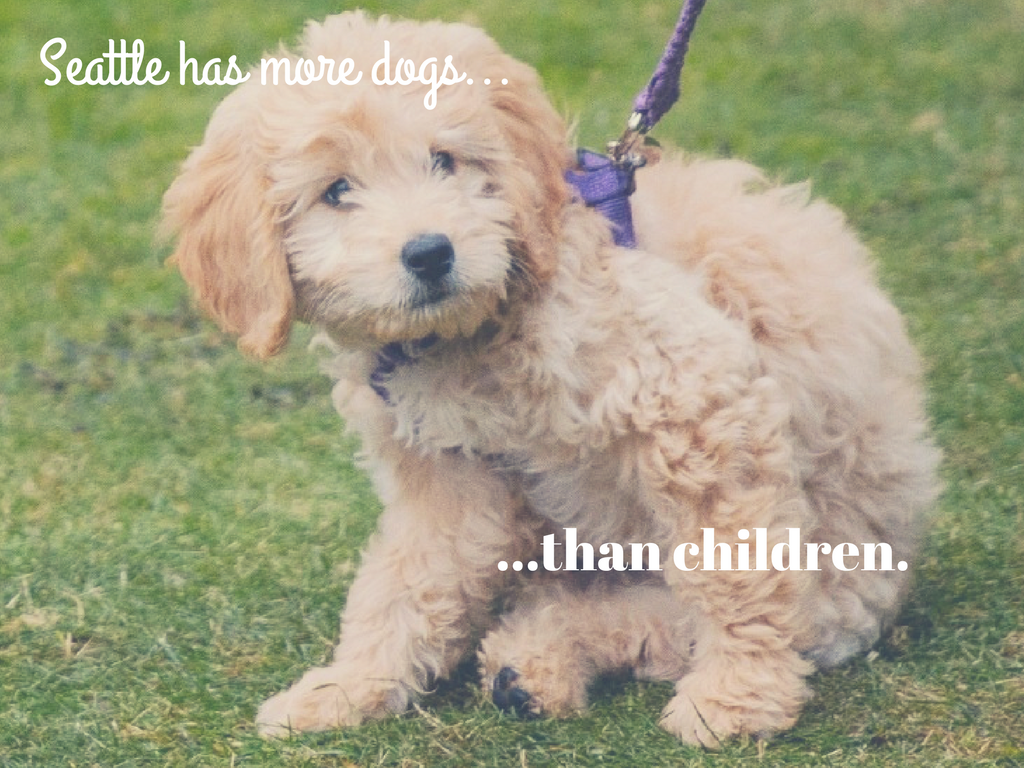 Fact #9. Furbabies...everywhere.  This city is overflowing with children...and no, not human children - furry baby puppy children. According to Mental Floss and recent census data, there are more puppies than there are children. (Image: Seattle Refined).