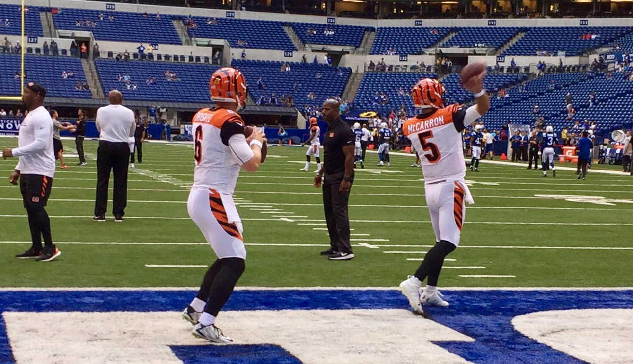 AJ McCarron, right, and Jeff Driskel, handled the quarterback duties for the Bengals on Thursday at Indianapolis as starters and several key subs sat out the game, but Driskel left the game in the first half with a thumb injury and didn't return (WKRC/Richard Skinner)