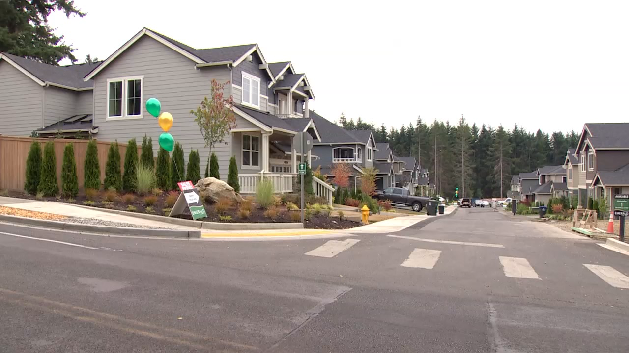 Bainbridge Island councilmember Michael Scott is proposing a ban on any balloons containing plastic, metal, or mylar. (Photo: KOMO News)
