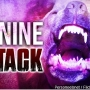 Woman in critical condition after dog attack