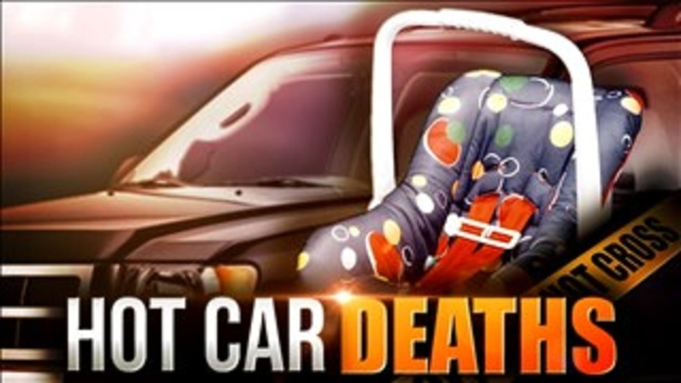 Image result for pictures of hot car deaths
