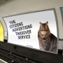Ad group launches Kickstarter to cover DC Metro station in cats