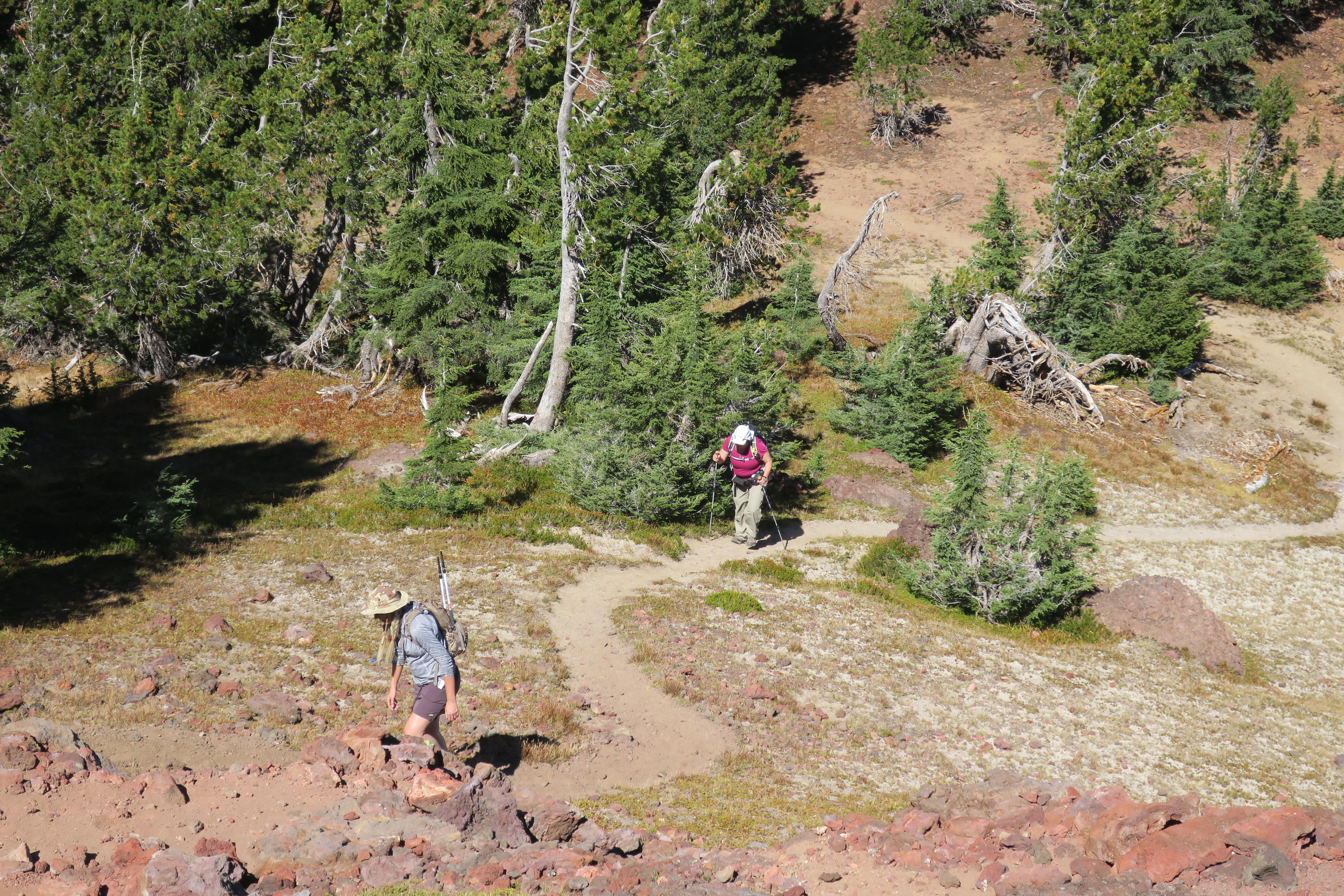 Hikers wend their up the steep, but short final stretch to Tipsoo Peak. Photo by Lee Juillerat
