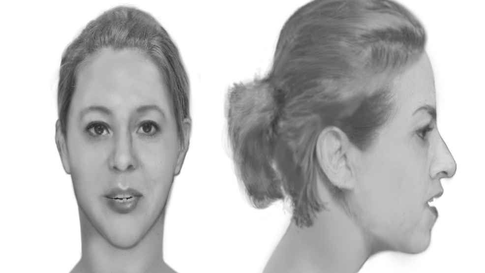 Who is this woman? Deputies release sketch of unidentified woman