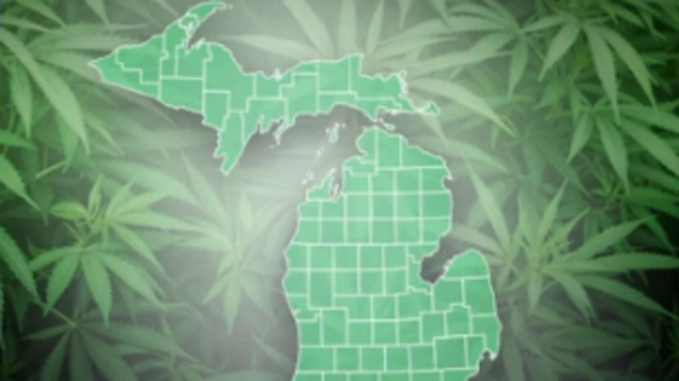 michigan marijuana.PNG