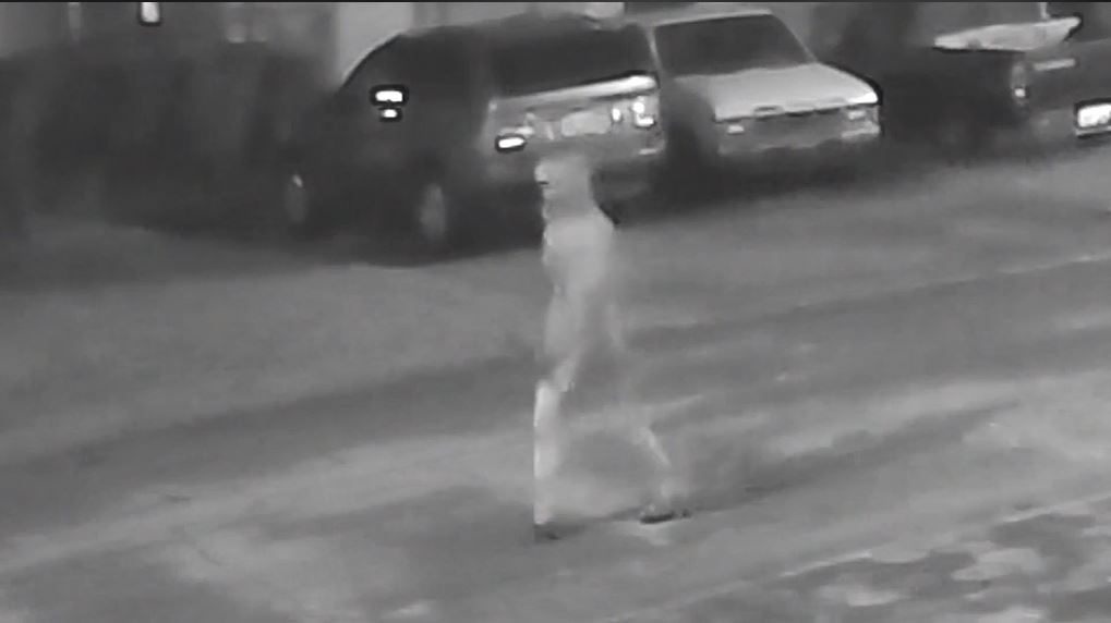 Tampa Police say there is a $91,000 reward in place for stopping a potential serial killer in{&amp;nbsp;} Seminole Heights.{&amp;nbsp;} Man seen on video in earlier incidents is now a suspect, according to police. (Tampa Police | CNN Newsource)<p></p>