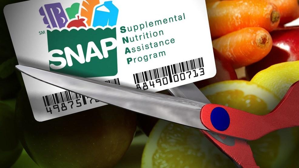 supplemental nutrition assisstance program